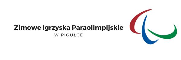 Zimowe Igrzyska Paraolimpijskie, wózek elektryczny, sport dla osób niepełnosprawnych, wózek inwalidzki, elektryczny wózek inwalidzki, sport dla wózkowiczów, sporty zimowe